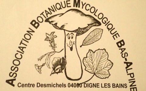 Réunion botanique en plein air!