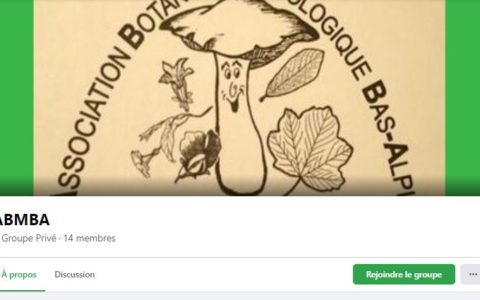 Création d'un groupe Facebook